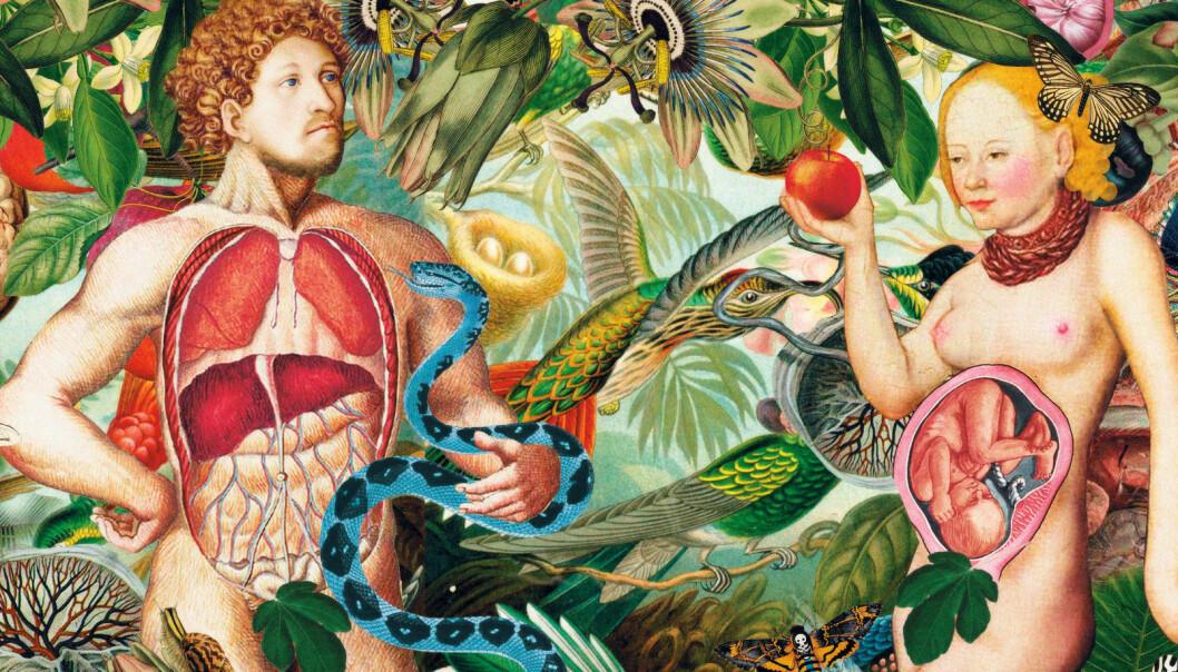 Illustrasjon: Anette L'orange