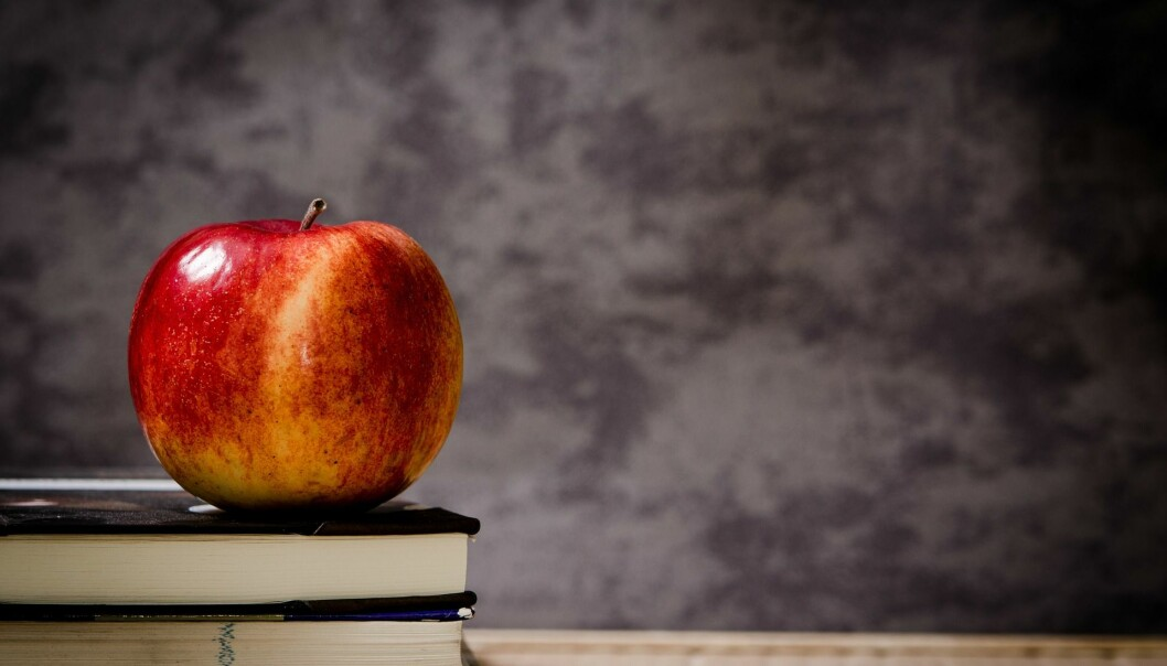Eple til læreren er kanskje litt drøyt, men hva med å respektere at hun og medelevene har forberedt et opplegg du skal lære av? spør Ivar Staurseth (Foto: Pixabay)