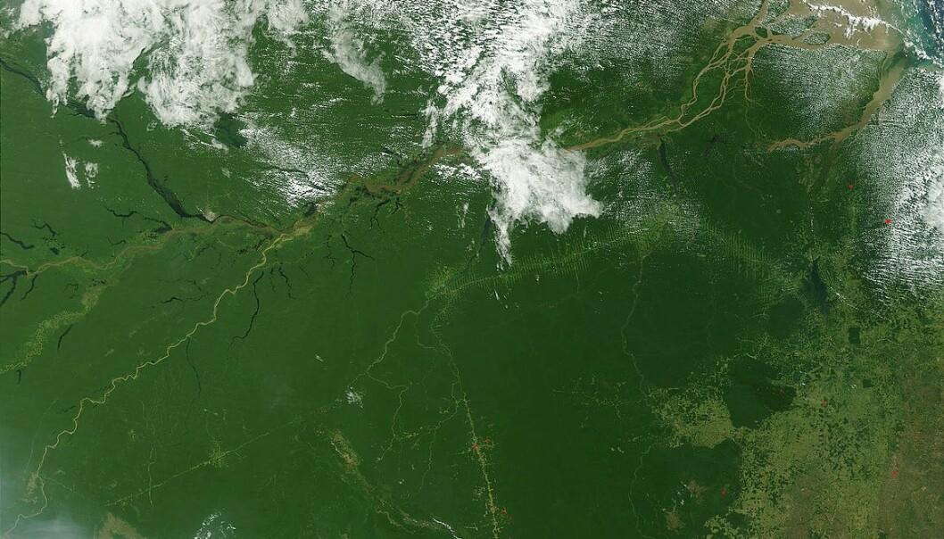 Regnskogen i Amazonas krymper. Det er et problem for klodens klima, men ikke for vår oksygentilgang. Bilde: NASA.