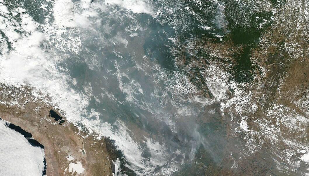 Røyken stiger opp over Amazonas etter mange skogbranner i år. Bilde: NASA.