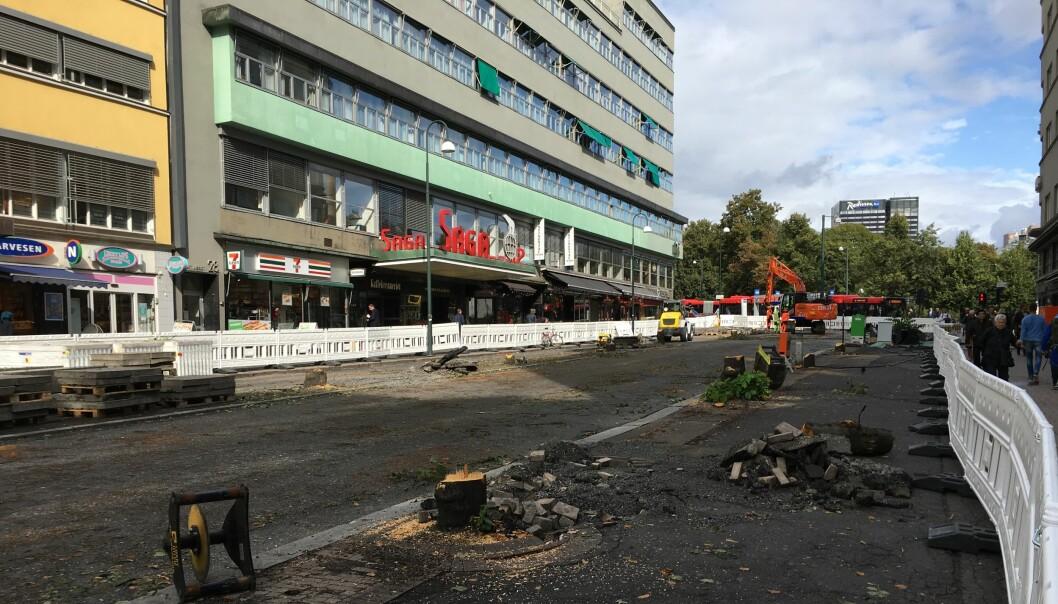Olav Vs gate etter felling av trær. Foto: Aksel Fridstrøm