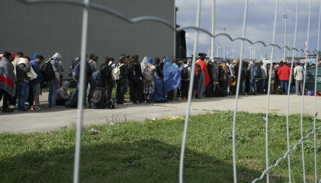 Syriske flyktninger på grensen mellom Ungarn og Østerrike Foto: Mstyslav Chernov