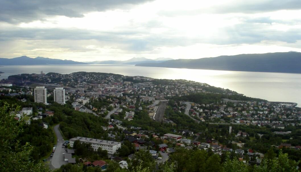 I Narvik har Høyre gått kraftig ned i oppslutning etter årets kommunevalg. Foto: Stunu/Wikimedia Commons (CC BY-SA 3.0)