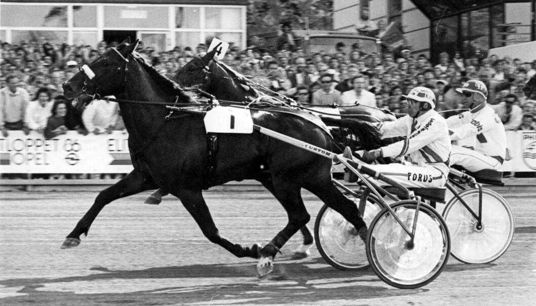 Rex Rodney vinner Elitloppet, Solvalla 1986. Foto: Arild Hansen/Wikimedia Commons (CC BY 3.0)