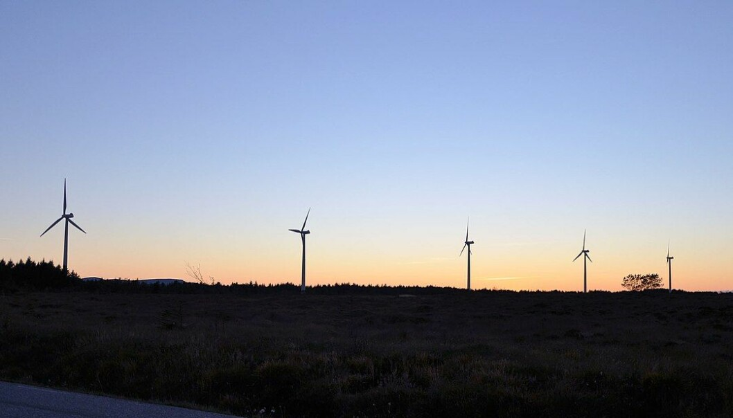 Vindturbiner på Sandøy Vindkraftverk.