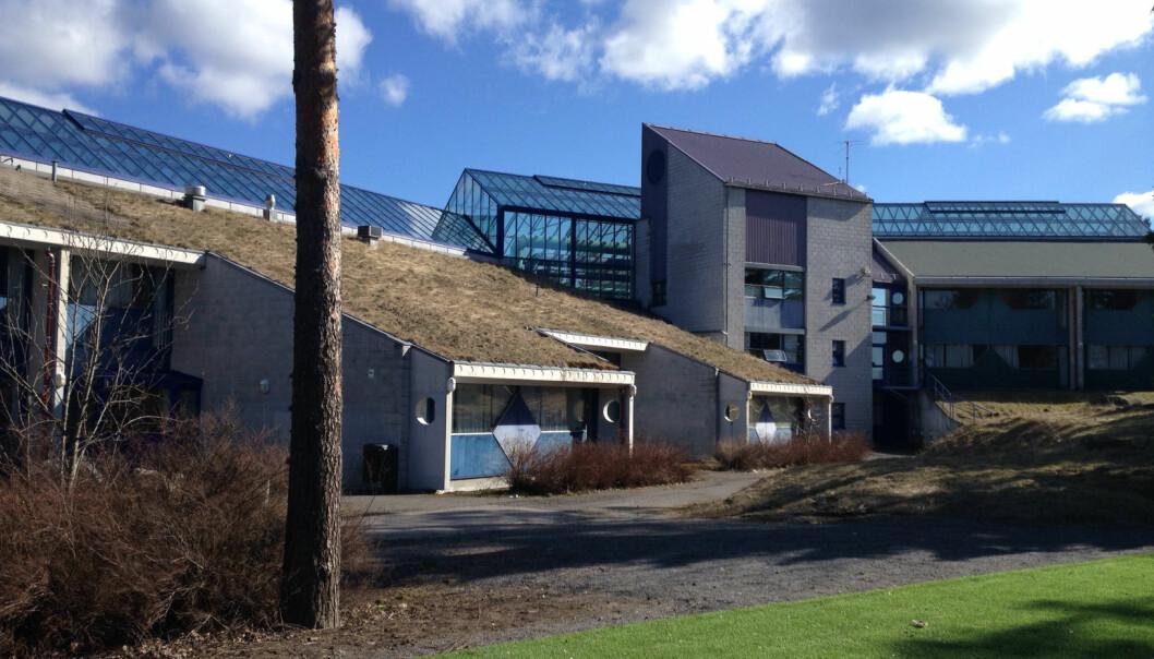 En gruppe lærere ved Lofsrud skole (bildet) skrev i desember at situasjonen på skolen er «prekær». Lærere i Osloskolen fortjener støtte, ikke bagatellisering, skriver Espen Goffeng.