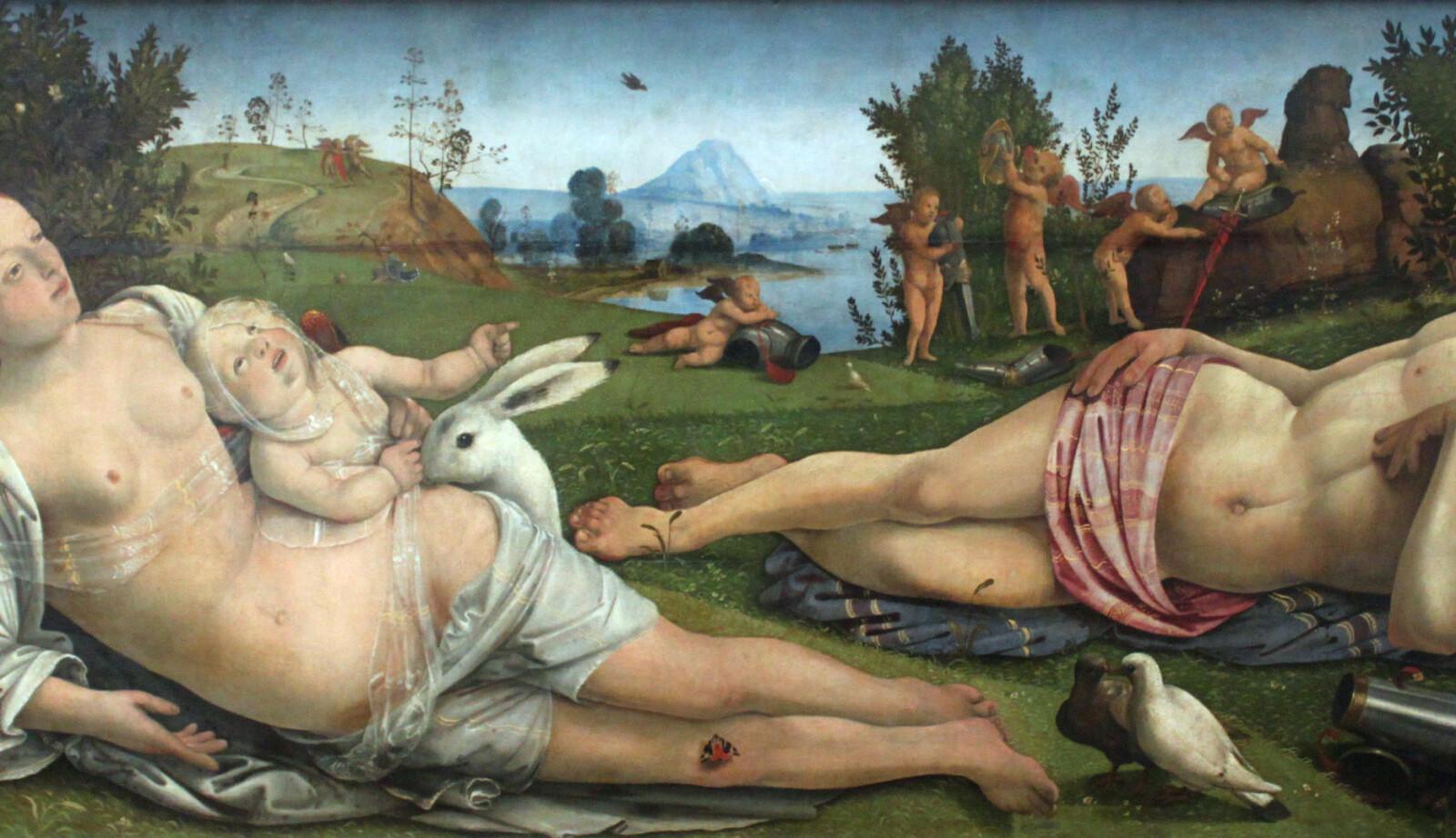 Piero di Cosimo sitt «Venus, Mars and Cupid» (1501) omhandler fruktbarhet og fødsel, symbolisert ved den hvite haren.