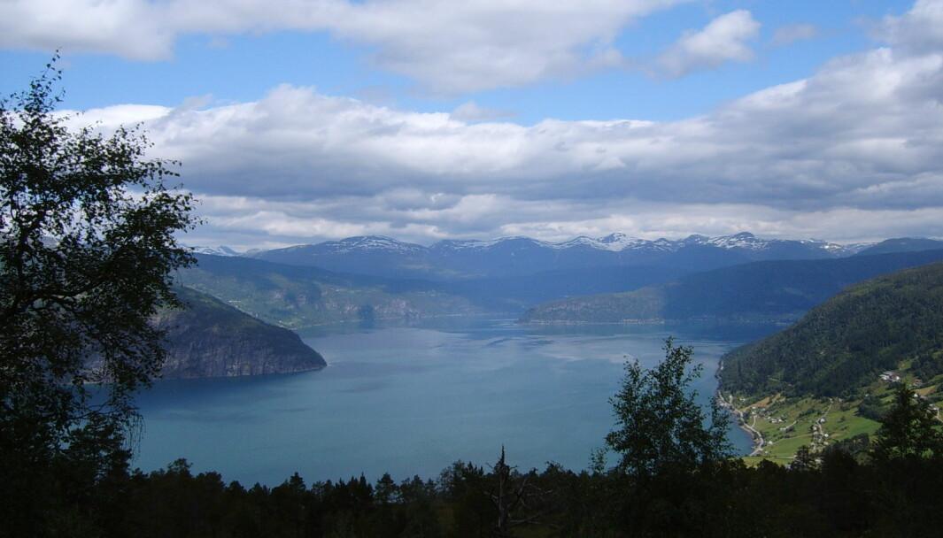 Planleggingen av fergefri E39 har allerede kostet over en milliard kroner. Regjeringen bør skrinlegge den opprinnelige planen for fjordovergangene før enda flere milliarder sløses bort, skriver innleggsforfatterne.