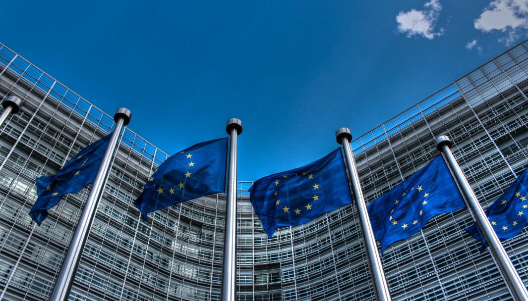 Presidenten for Det europeiske forskningsråd fikk ikke rette midler mot koronaforskning.