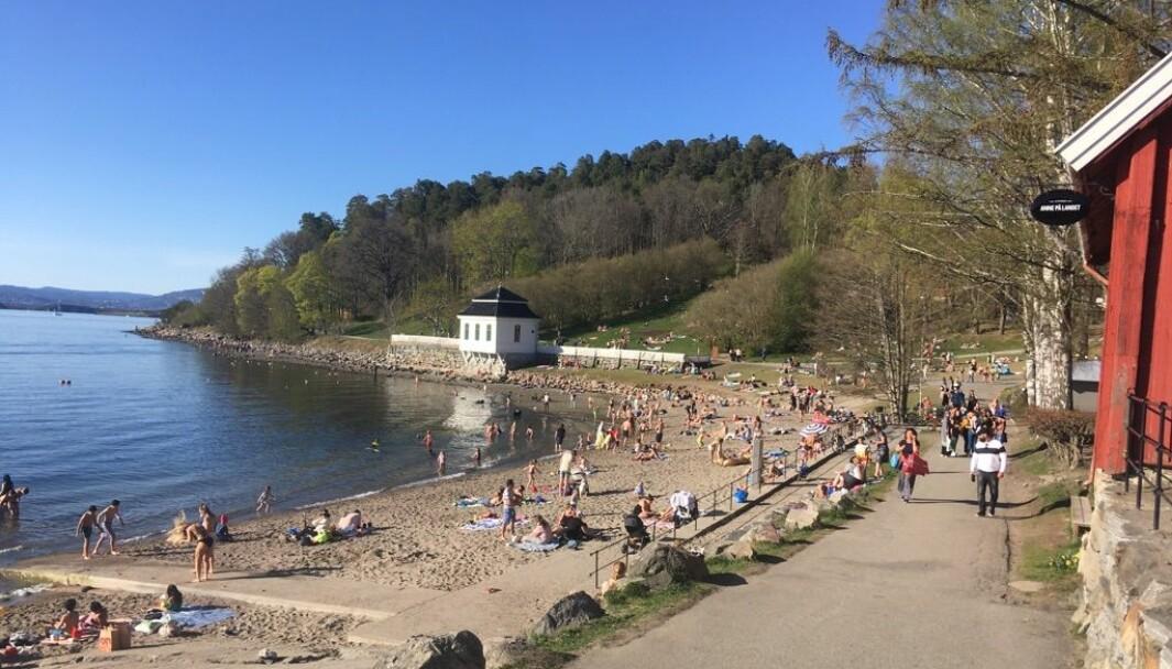 Folk strømmet til Hvervenbukta i Oslo onsdag ettermiddag for å nyte vårværet. Norge begynner nå å åpne opp igjen siden myndighetenes tiltak ble iverksatt i mars.
