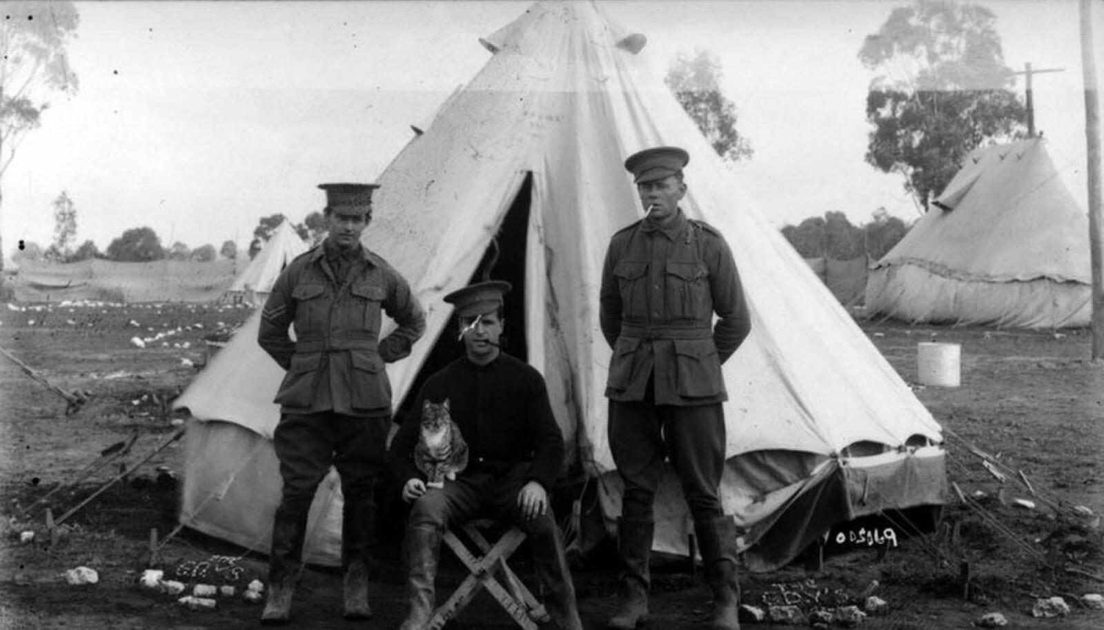På bildet ser vi treningsleiren Seymour, som ble etablert ved utbruddet av første verdenskrig.