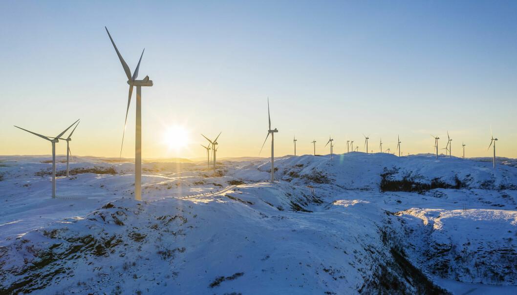 Roan vindpark, som er en del av Fosen-utbyggingen, trekkes gjerne frem som rasering av naturen.