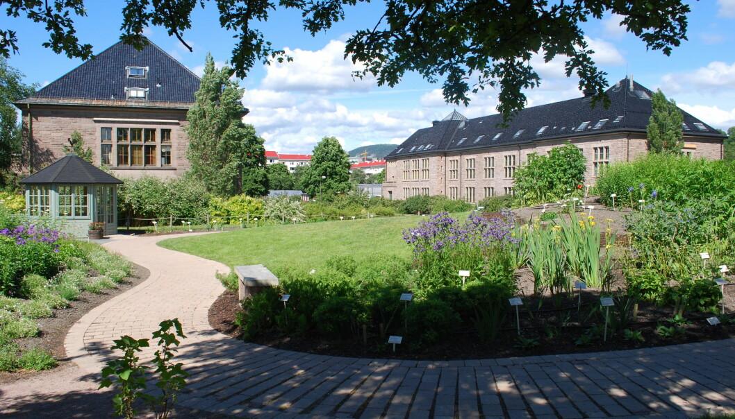 Botanisk Hage i Oslo
