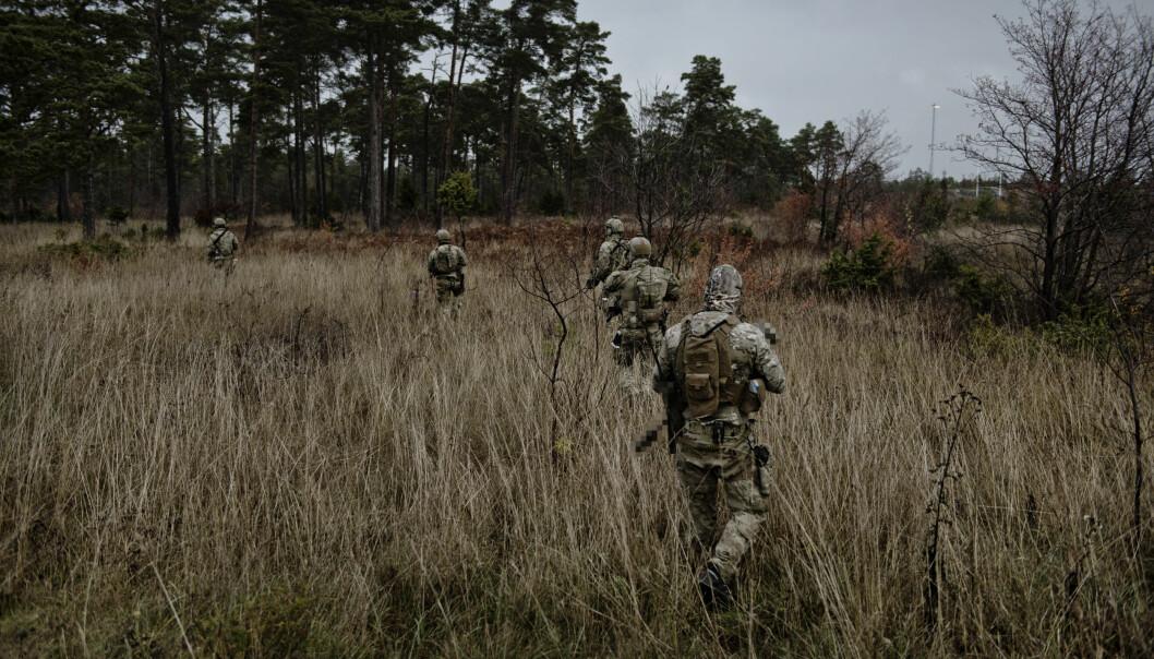 Specialförbanden övar nationellt försvar på Gotland.