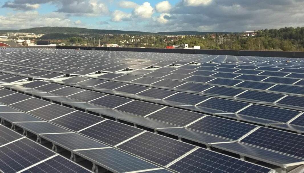 De 15 000 kvadratmeterne med solcellepaneler som ASKO Norge har montert på taket i Oslo produserer energi til el-lastebiler.